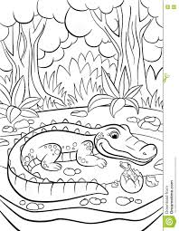 coloring pages animals mother alligator stock vector image