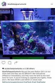 179 best marine aquariums and aquascaping images on pinterest