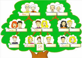the gap fill exercises with the family tree