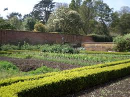 trengwainton u0027s wartime garden project cornwall
