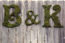 moss covered letters all things moss covered letters