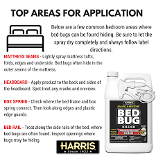 Can Bed Bugs Kill You Your Top Recommended Bed Bug Spray To Kill Bed Bugs Fast Your