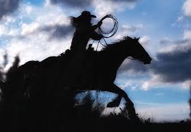 Colorado Photographers 2 Colorado Horse Drive Equine Photography Workshops