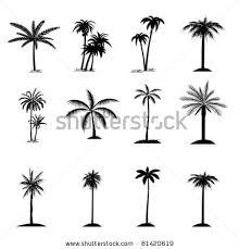 set of palm tree by dragana gerasimoski via tatoo