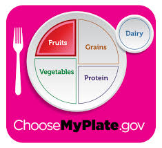 myplate nutrition cliparts clip art library