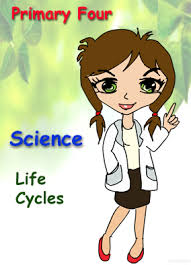 singapore science worksheets