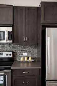 Dark Espresso Kitchen Cabinets by Arabesque Selene Tile Backsplash With Espresso Cabinets And
