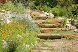 Creating A Rock Garden Rock Garden Ideas Best Of 11 Ideas For Creating A Rock