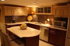 basement kitchen traditional basement philadelphia by rta