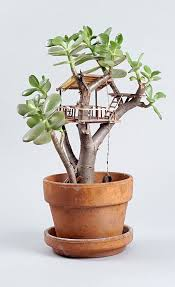 mini plants miniature tree houses for plants is perfect home for fairies tree