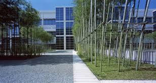landscape bamboo landscape design with travertine tiles design