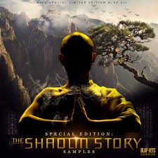 llmind the shaolin story samples digital download