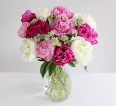 peonies flower delivery hello pinteresters astrantia peonies bouquet and white peonies