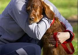 dog euthanasia euthanasia outside of the veterinary hospital spot speaks