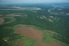 What Are Flood Plains Lakes Amazon Waters