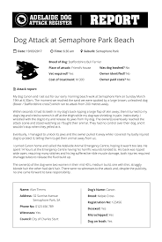 afghan hound attack submit report adelaide dog attack register it u0027s easy and