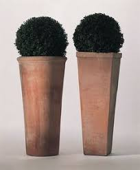 two tall terracotta pots planted with box balls stand sentinel at