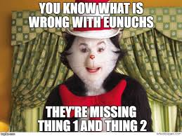 Cat In The Hat Meme - the explaining of the most unfortunate people imgflip