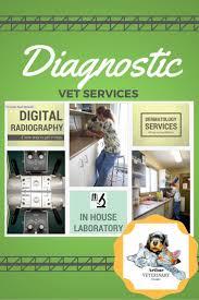 Veterinary Clinic Idaho Veterinary Internal Best 25 Veterinary Dermatology Ideas On Pinterest Vet Assistant