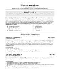 software engineer resume template download sr software engineer resume dalarcon com download strategic account executive in chicago il resume robert
