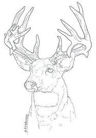 Wood Carving Patterns Free Animals by 394 Best Wood Burning Images On Pinterest Pyrography Wood