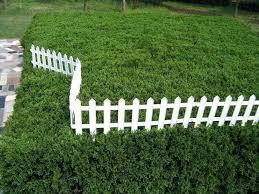 Fence Ideas For Garden Garden Fence Large Size Of Garden Garden Fence Ideas Metal