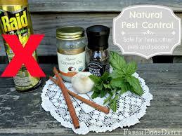 cutter backyard bug control safe for pets backyard ideas