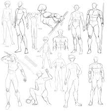 Human Male Anatomy 42 Best Anatomy Male Images On Pinterest Drawing Tips Draw And