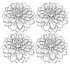 flowers vegetation coloring pages adults justcolor