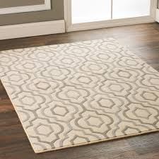 The Dump Rugs 100 12x14 Rugs Garages Shag Area Rug Lowes Rugs 8x10 8x10