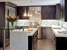 Kitchen Design Pictures Dark Cabinets Wonderful Galley Kitchen Remodel Cost Small Modern Kitchen With