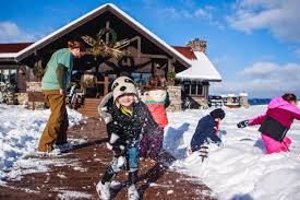 christmas family vacation ideas u2013 the last best blog
