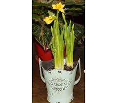 order flowers online florist inc 800 637 8803 buy order flowers online flowers
