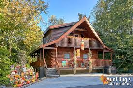 cheap pet friendly cabins pigeon forge tennessee hotels resorts tn