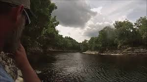 spirit of suwannee halloween we visit spirit of the suwannee bat house river and springs