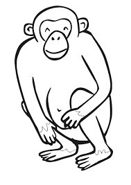 zoo coloring pages monkey funnycrafts