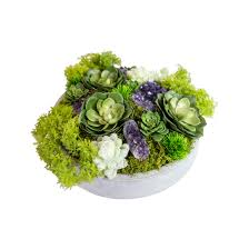 furniture beautiful coffee table centerpieces purple succulents
