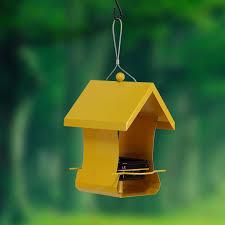 bird feeder bird feeding birds house type birds feeding raising