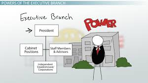 executive branch of government definition responsibilities