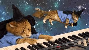 halloween cat wallpaper keyboard cat happy halloween youtube