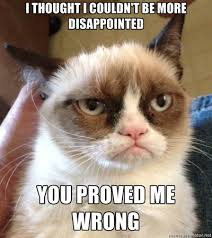 Internet Meme Cat - 5 best photos of the grumpy cat internet meme socialeyezer