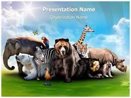 animal powerpoint template yasnc info