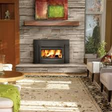 napoleon epi3 wood burning fireplace insert w cast iron surround