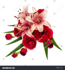 flowers lilies roses isolated on white stock photo 324788204