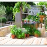 small vegetable garden plans ideas ltdsdx decorating clear