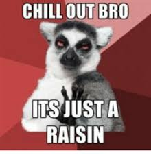 Chill Out Bro Meme - chill out bro its just a raisin raisin meme on me me