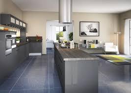 cuisine castorama 3d cuisine équipée avec meuble plantes vertes meilleur de