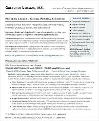 project management resume pdf project manager resume format top 8 junior project manager resume