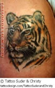 images about tattoos on tiger print tattoos tiger