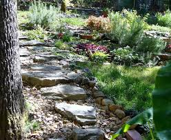 How To Landscape A Sloped Backyard - i needed lovely water drainage control for a sloped yard hometalk